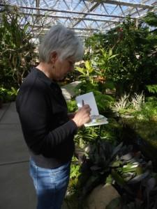 Nancy sketching at Roger Williams Park